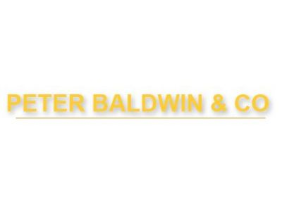 Peter Baldwin & Co